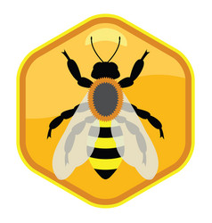 symbol single working bee on honeycell vector image