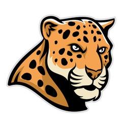 jaguar head mascot vector image