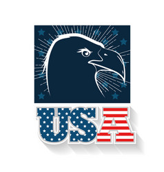usa eagle design vector image