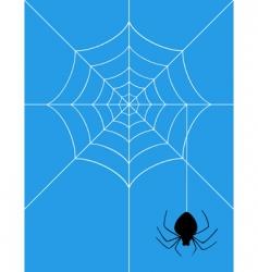 spider2 vector image
