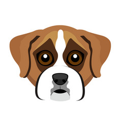 Cute boxer dog avatar vector