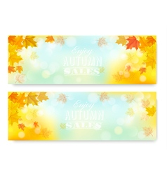 Enjoy Autumn Sales Banners with Colorful Leaves vector image