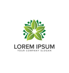 leaf decoration logo design concept template vector image