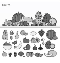 many fruits on table line monochrome vector image