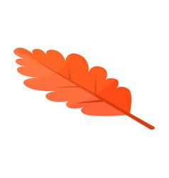 oak leaf icon isometric style vector image