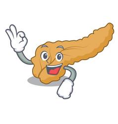 Okay pancreas character cartoon style vector