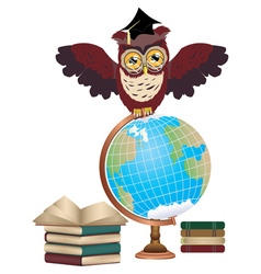 Owl with Globe3 vector image