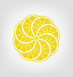 Round from lemon slice citrus vector