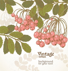 Vintage grunge rowan color background for your tex vector