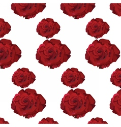 Watercolor Dark Red Rose pattern vector