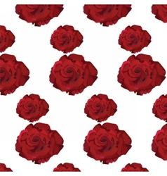 Watercolor Dark Red Rose pattern vector image