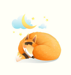 baanimal fox sleeping at night under stars vector image