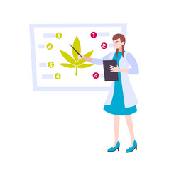 cannabis medical study composition vector image