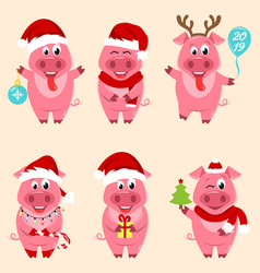 christmas cartoon pigs portrait in santa s hat and vector image