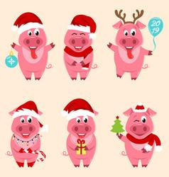 christmas cartoon pigs portrait in santa s hat vector image