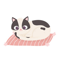 Cute white and black cat resting in mat pet vector
