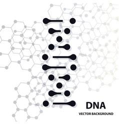 dna molecule structure background vector image