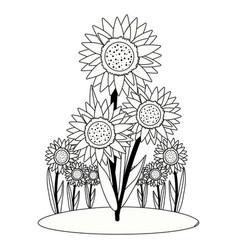 Foral sunflower nature cartoon vector