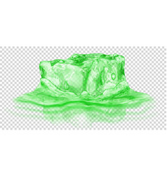 ice cube in water vector image