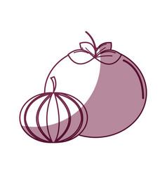 Silhouette tomato and onion healthy delicious vector