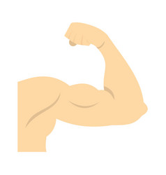 arm showing biceps muscle icon flat style vector image