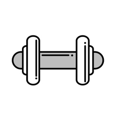 weight lifting equipment isolated icon vector image