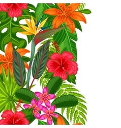 Seamless vertical border with tropical plants vector