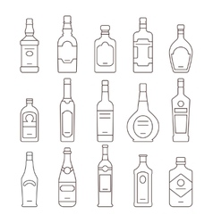 Alcohol drink bottles types of icons set vector