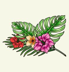 Blooming hawaiian tropical floral bouquet vector
