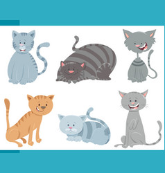 cute cats and kittens characters set vector image