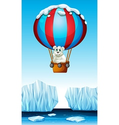 Polar bear riding in the balloon vector image