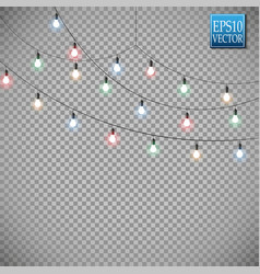 christmas lights isolated on transparent vector image