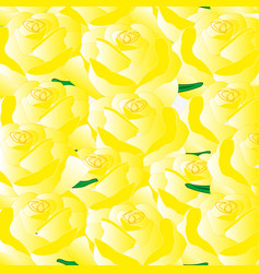 background from roses yellow vector image