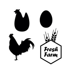 Chicken and Farm emblems vector image