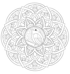 adult coloring bookpage a zen mandala image for vector image