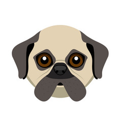 Cute pug dog avatar vector