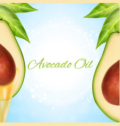 fresh avocado slice with oil vector image