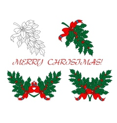 Holly branches for christmas design vector