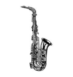 jazz saxophone in monochrome engraved vintage vector image