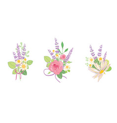 Set of three roses and lavender flowers bouquets vector