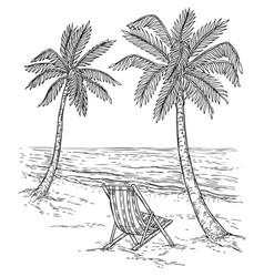 Sketch palm tree landscape tropical palm beach vector