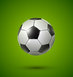 Soccer ball on green vector