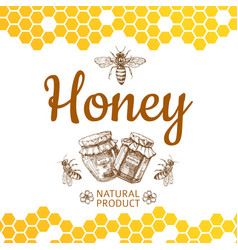 vintage honey logo and background with bee vector image
