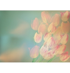 Greeting card with tulips EPS 10 vector image
