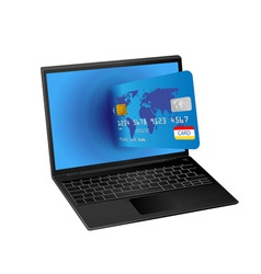 laptop computer and credit card vector image vector image