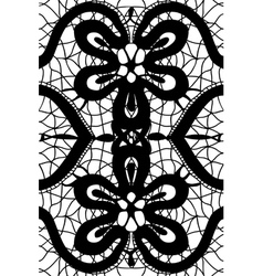 simple pattern lace vector image vector image