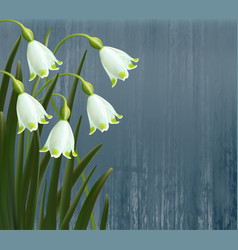 floral background spring flowers snowflakes vector image vector image