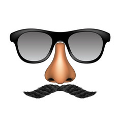 funny mask made of glasses mustache and nose vector image