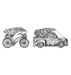 car and bicycle with a christmas tree spruce vector image