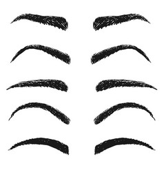 Fashion woman eyebrow sketch isolated set on white vector